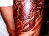 red-scorpio